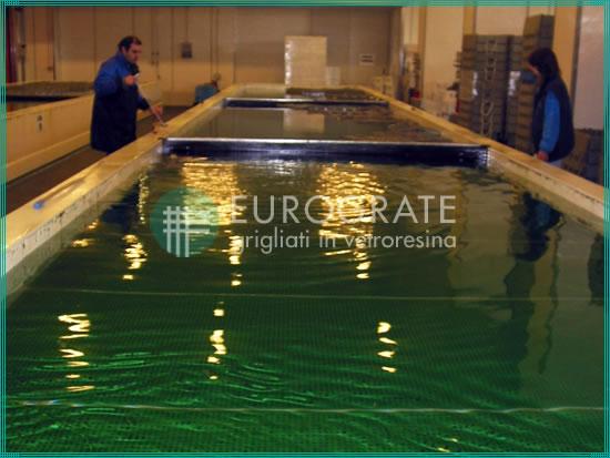 passerelle grigliate immerse nell'acqua per il settore ittico