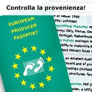 Eurograte Grigliati Made in Italy Passaporto Industriale